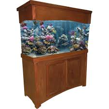 r j enterprises fusion 50 gallon aquarium tank and cabinet r j enterprises stylish calypso birch fish tank stands