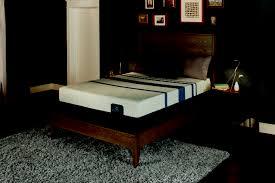 Serta Icomfort Bed Frame Serta Icomfort Blue 500 Plush