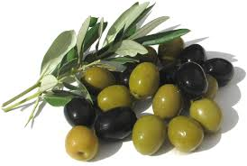 italian olives extend an olive branch forked river gazette