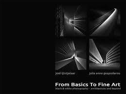 book from basics to fine art bwvision black and white fine