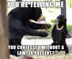 Meme Bear - confession bear meme is in deep water for all his confessions