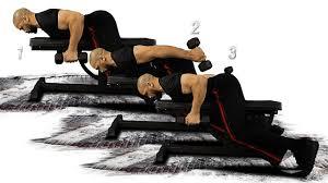 triceps kickback 2 dumbbell flat bench youtube
