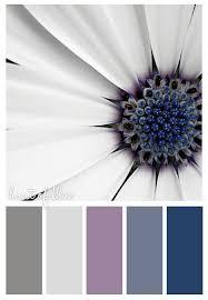 the 25 best colour schemes ideas on pinterest color pallets