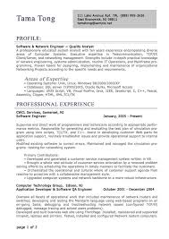 resume format it professional it resume format pertamini co