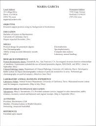 Internship Resume Objective Examples by Sample Internship Resume Internship Resume Sample 10 Internship