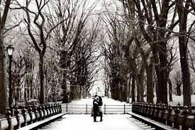 photographers in nyc engaged hugging in central park new york the