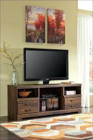 Entertainment Storage Cabinets Electric Fireplace Entertainment Center Clearance Center Clearance