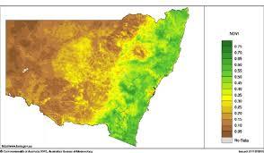 australian bureau meteorology figure 13 normalised difference vegetation index ndvi november