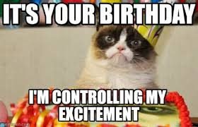 Birthday Grumpy Cat Meme - happy birthday song images google search birthday pinterest