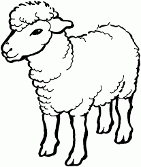 sheep coloring pages pictures 2057