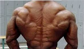 who has had the best tree bodybuilding com forums