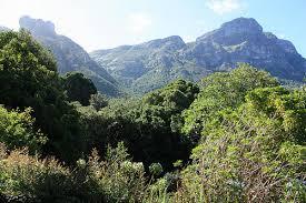 Kirstenbosch National Botanical Garden Kirstenbosch National Botanical Garden Cape Town South Africa