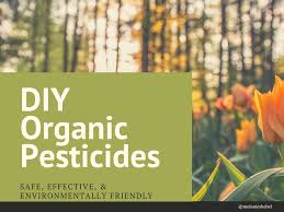 Natural Pesticides For Vegetable Gardens by Diy Organic Pesticides For Natural Gardening Dengarden