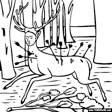 tiger coloring pages arterey