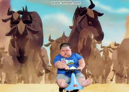 Fat Asian Baby Meme - best of fat asian baby smosh