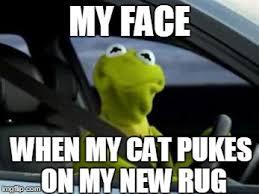 Kermit Meme My Face When - sad kermit imgflip
