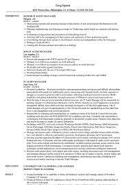it audit manager resume samples velvet jobs