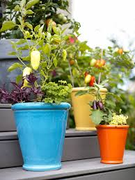 kitchen gardening ideas fresh ideas for growing vegetables in containers