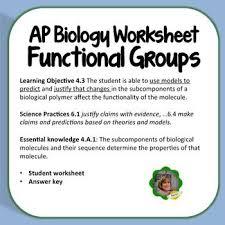 ap biology worksheets worksheets