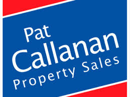 sites for sale in loughrea galway daft ie