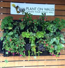 living living wall garden indoor designs that make the room