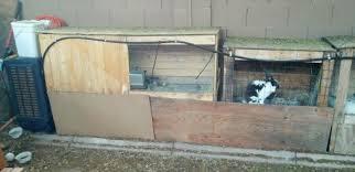 Rabbit Hutch Set Up Raising Meat Rabbits Through An Arizona Summer Desolate Homestead