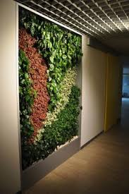 Interior Plant Wall Gsky Plant Systems Designs Green Walls For Retail Commercial