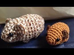 newborn pattern video this video is about how to crochet a baby guinea pig you can find