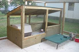 the real apbt dog kennel setups and designs westipoo puppies