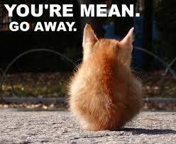 Go Away Meme - you re mean go away viral viral videos