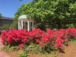Botanical Garden Chapel Hill by A Weekend In Chapel Hill North Carolina U2014 Her Postcard Life