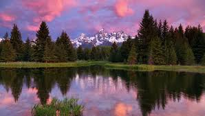 Wyoming forest images Grand teton national park mountains lake trees forest sky clouds jpg