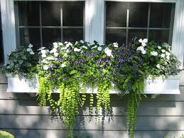 Balcony Planter Box by Shop Window Boxes Planter Boxes Flower Boxes