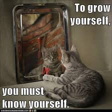 Personal Meme - growth mindset resources to grow yourself you must know yourself