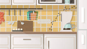 how to clean cupboards after pest how often should pest be done lloyd pest