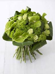 Lime Green Flowers - 25 best green flowers ideas on pinterest floral arrangements
