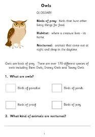 all worksheets nocturnal animals ks1 worksheets printable