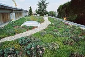 come realizzare un giardino pensile coperture a verde come realizzare giardini pensili