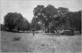 Battle of Fort Buchanan