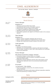 Computer Skills In Resume Sample by Finance Manager Resume Samples Visualcv Resume Samples Database