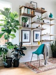plante verte dans une chambre plante interieur pour plante verte pour chambre frais ment décorer