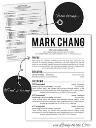 Cool Resume Formats  word professional resume template