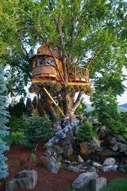 Treehouse Nz Tree Houses Tree Houses Treehouse And House