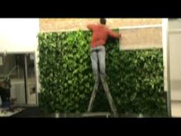 simple green living wall installation youtube