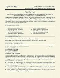 Sample Resume For Hotel Industry by Resume Professional Summary Examples Resume Template 2017