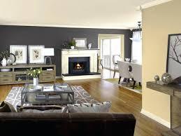 cool interior paint colors u2013 alternatux com