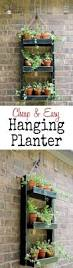 best 25 hanging wall planters ideas on pinterest cheap ladders