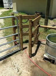 Show Steer Barns Best 25 Cattle Barn Ideas On Pinterest Horse Fence Horse