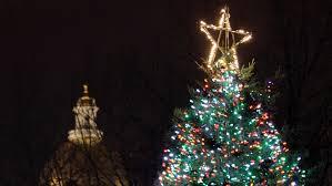 boston tree gift costs scotians 242k scotia