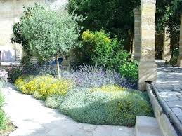 Mediterranean Gardens Ideas Mediterranean Garden Ideas Garden Design Ideas Doubtful Amazing